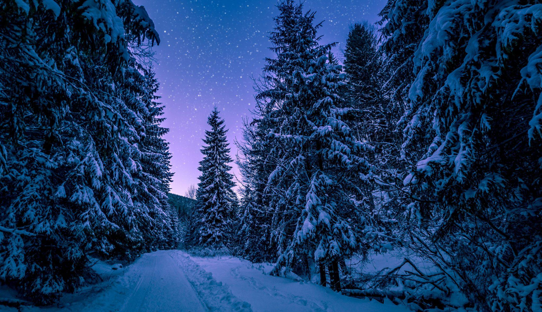 Header_1_Winter